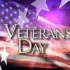 vets day flag
